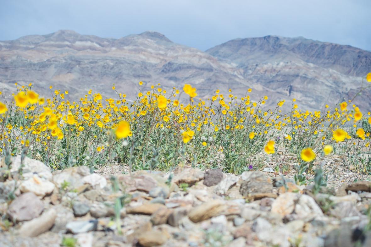 Death_Valley_2016-10