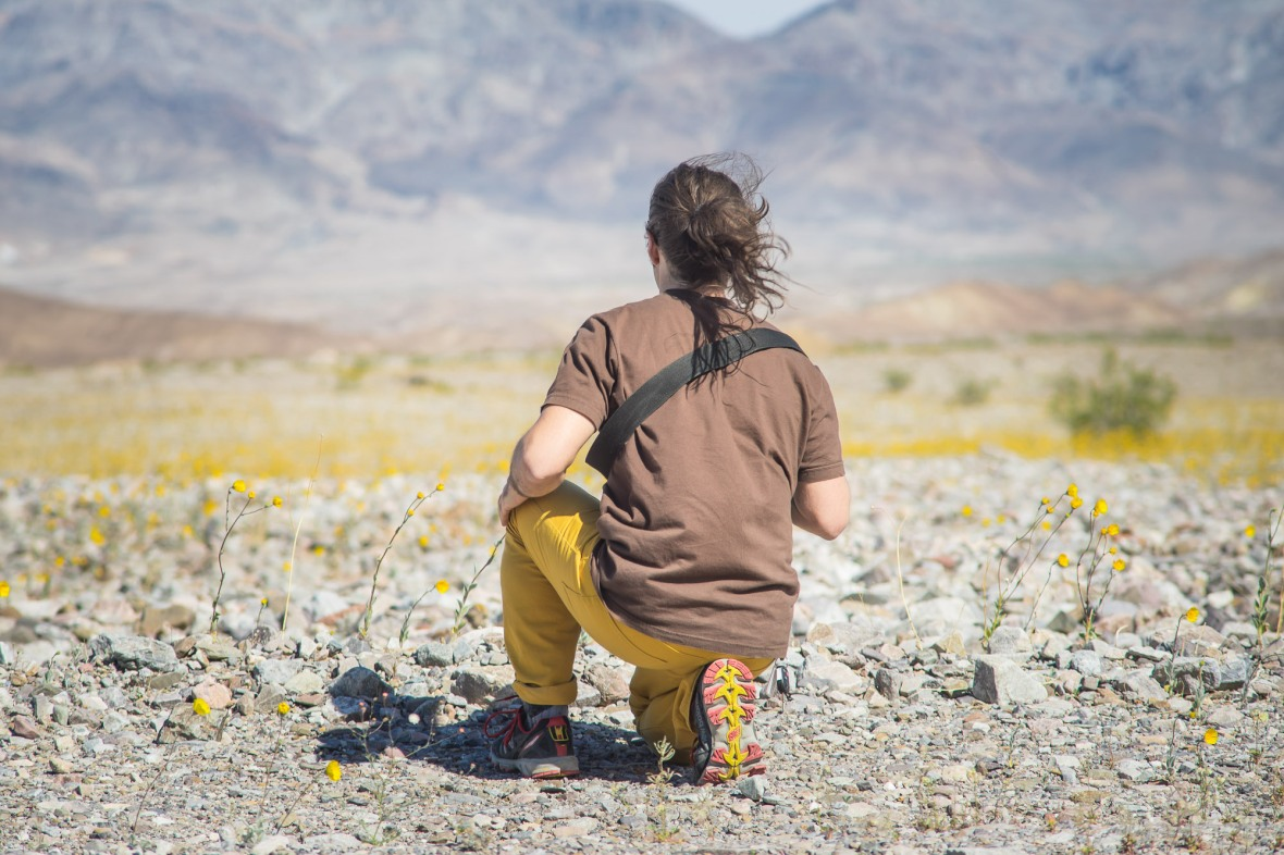 Death_Valley_2016-12
