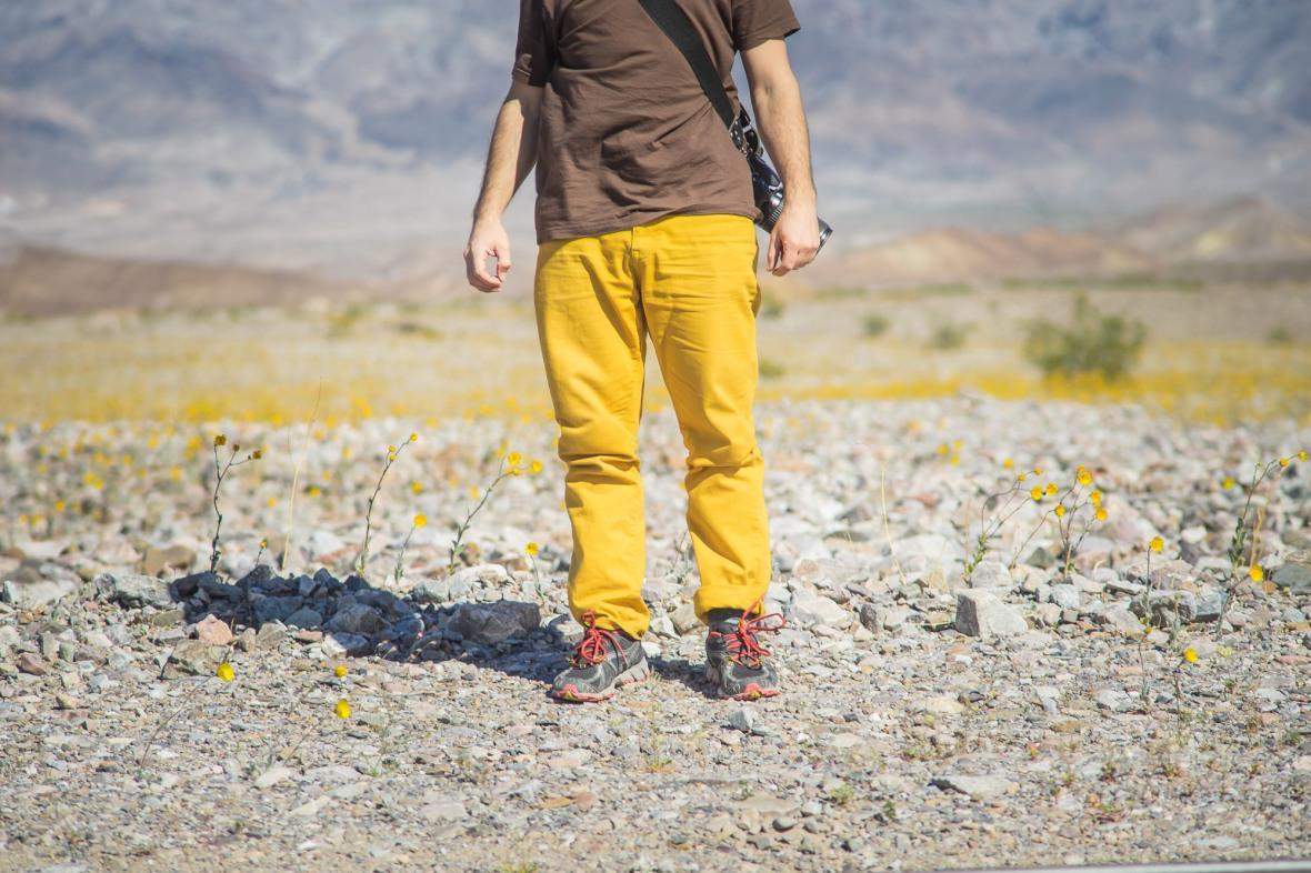 Death_Valley_2016-13